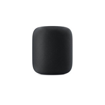 Apple HomePod Space, Gray