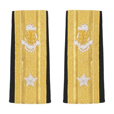 Soft Boards RDML Lower (1 Star) Medical Service Corps
