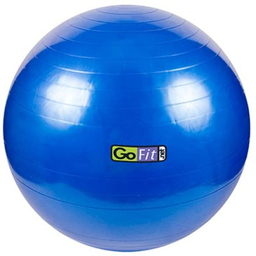 GoFit Stability Exercise Ball  with Pump & Exercise Poster
